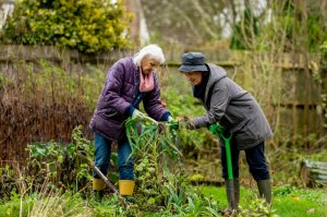 Gardening: A wonderful way to support your health and wellbeing