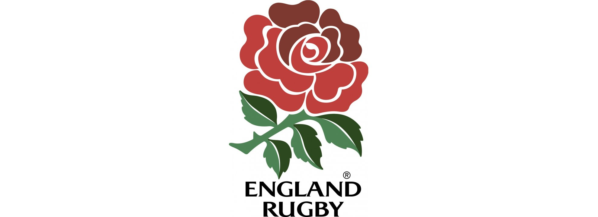 Rugby World Cup 2019 Banner