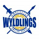 Worcester Wyldlings Roller Derby Icon